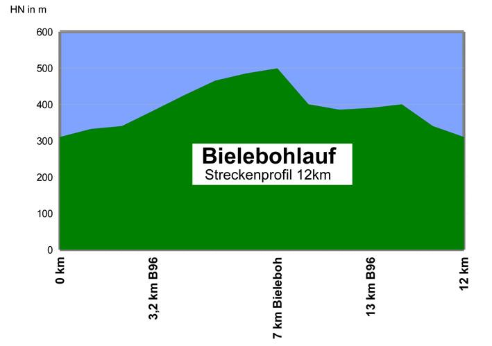 Bielebohlauf 2014 streckenprofil_12km